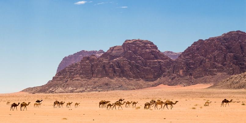 Wadi Rum scene