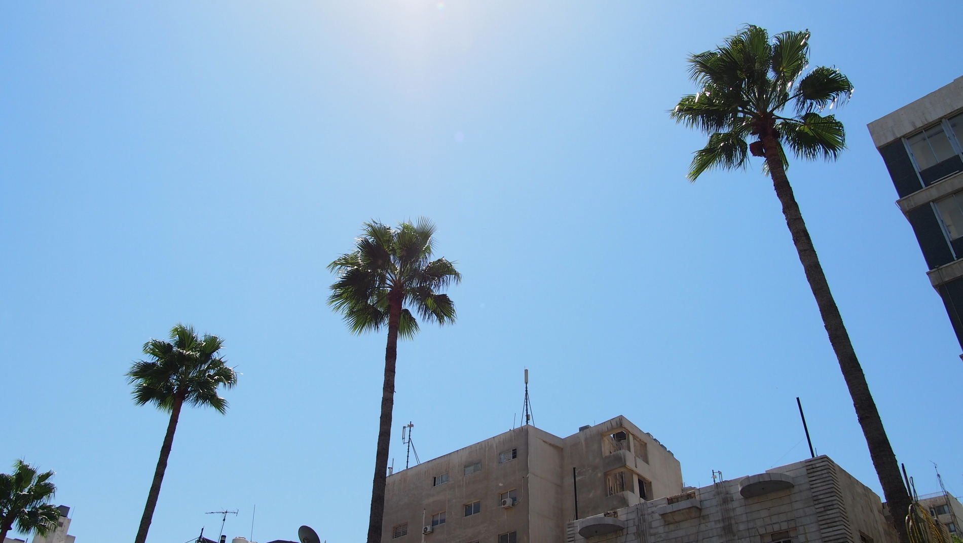 We'll tell you how to Get from Amman Queen Alia Airport to Amman