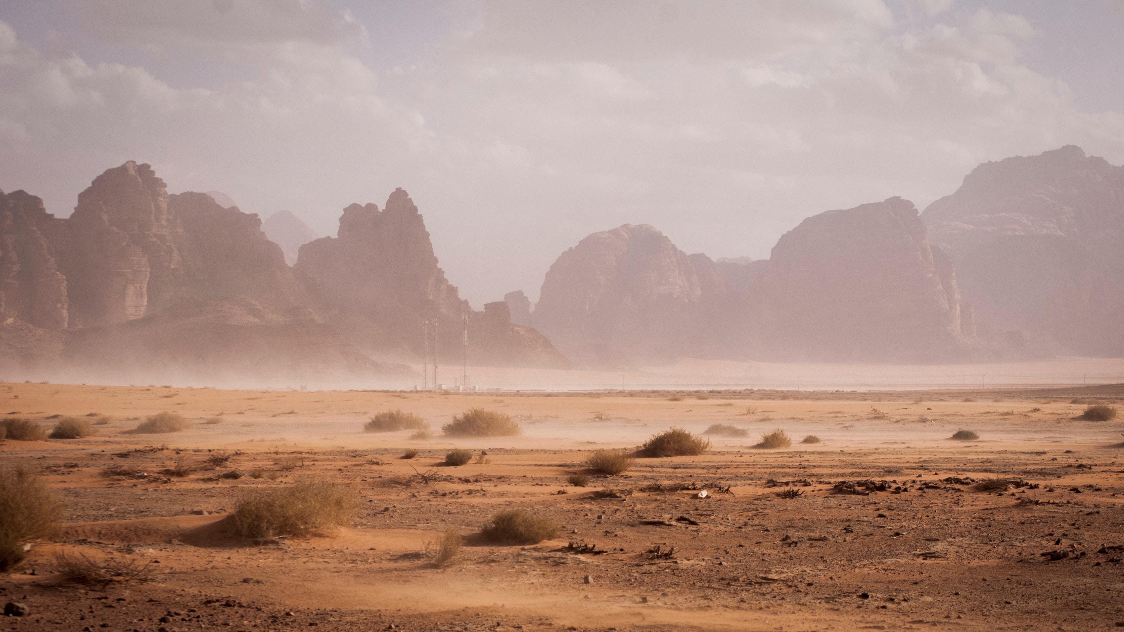 Azraq Reserve